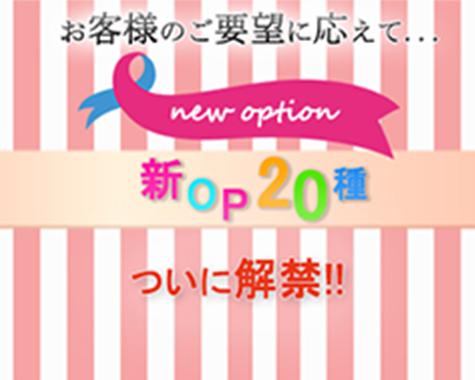 お客様のご要望にお答えして、ついに新オプション20種解禁!!